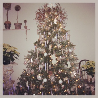 Our Christmas tree in one of its better years.