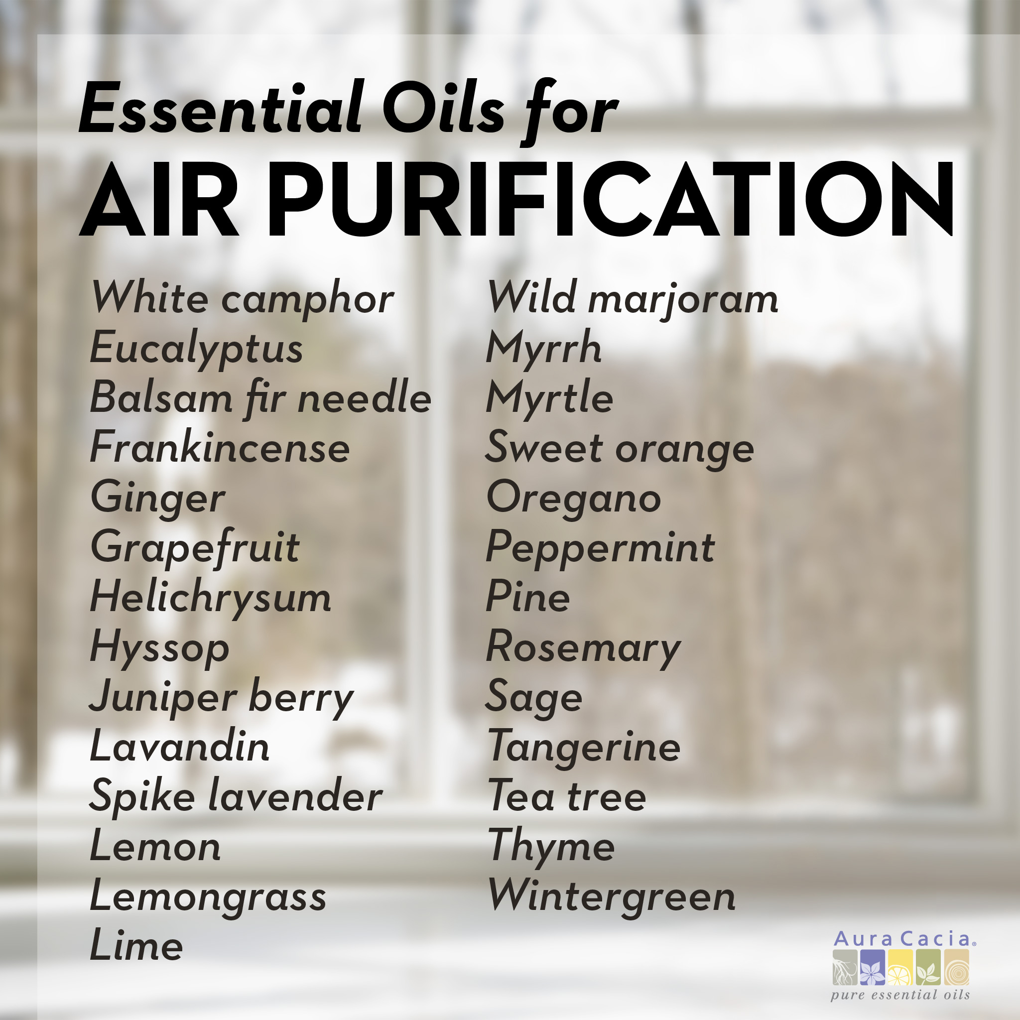 27 Essential Oils To Purify Air Naturally The Cayenne Room