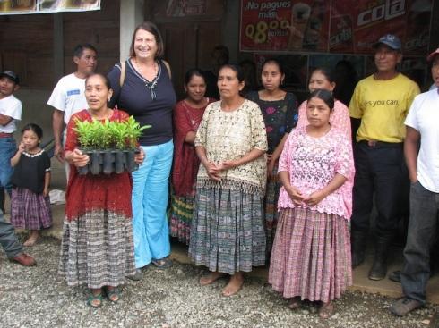 Kathy Larson allspice seedlings