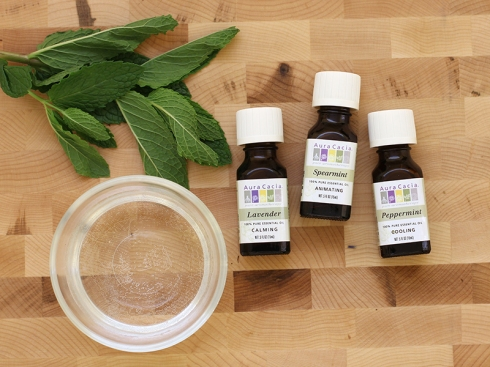 outdoor essential oil recipes