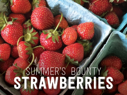 Summer's Bounty: Strawberries
