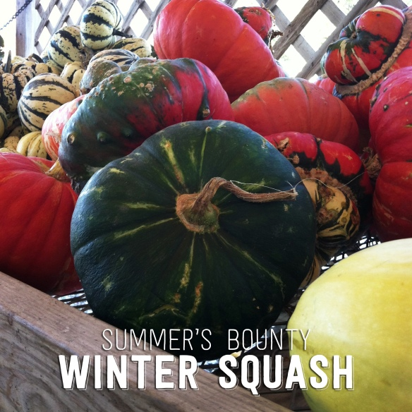 Frontier Co-op Winter Squash