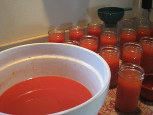 The first batch of juice from our canning of 85 pounds of tomatoes.